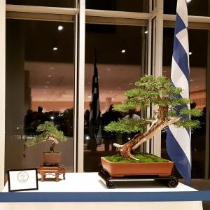Δεξίωση για την επέτειο γενεθλίων του Αυτοκράτορα της Ιαπωνίας -  Νοέμβριος 2018 Νιάρχος