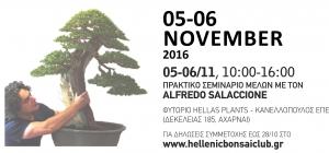 Hellenic Bonsai 2016 - Mediterraneo