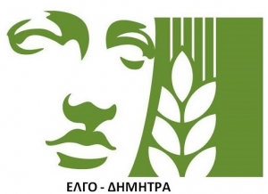 Εργαστήριο διαμόρφωσης μπονσάι στην ΕΠΑ.Σ. Συγγρού