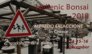 Hellenic Bonsai 2018